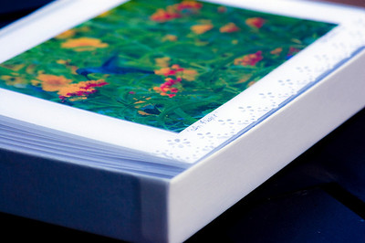 Boxed set of 8 large folded note cards with hand-punched edges. Envelopes included. ($12.00)