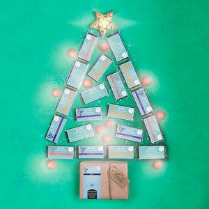 Christmas Tree Promo 02
