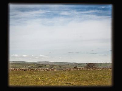 yurts-158