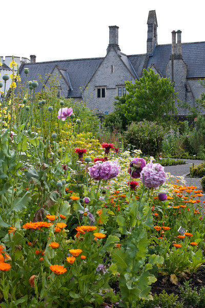 Cowbridge Physic Garden, Wales