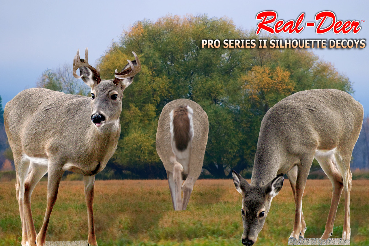 THREE-PACK WHITETAIL DECOYS
