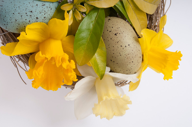 Easter floral arrangement isoldated on white background