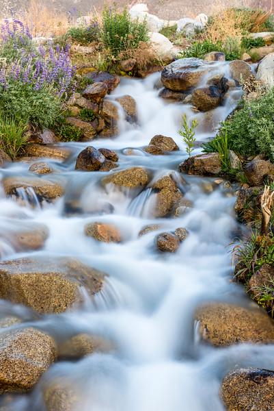 Rushing water at Division Creek