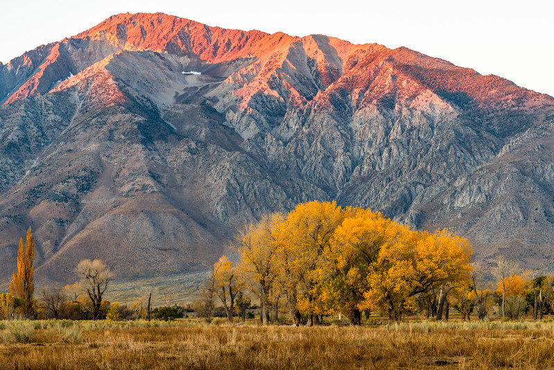 Mt Tom, Owens Valley, CA