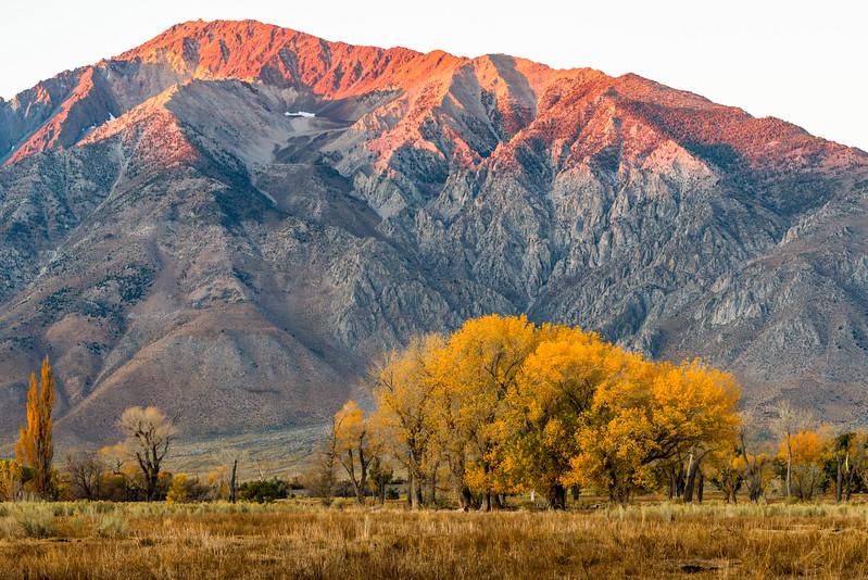 Mt Tom, Owens Valley, CA