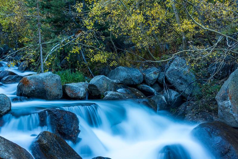 Silky Bishop Creek, Bishop Creek, CA