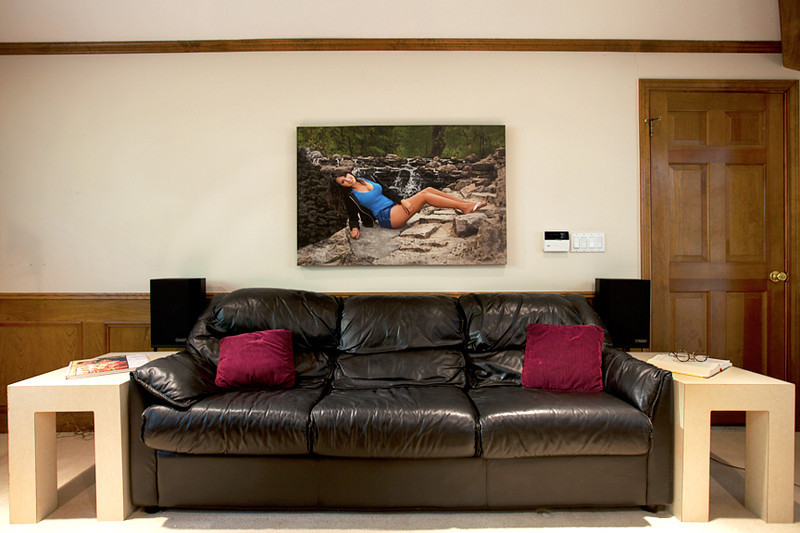 "Gallery Wrap Wall Art Decor, custom-printed on Canvas of adequate size to display over a sofa (pictured here), a mantel or a loveseat.  This size is  48"" wide x 32"" high and is about the proper size to blend in as part of the decor.  The next image is the same photograph, except a metal print sized 10"" x 8"" is displayed over the sofa.  You decide which one looks best for an artistic display!"