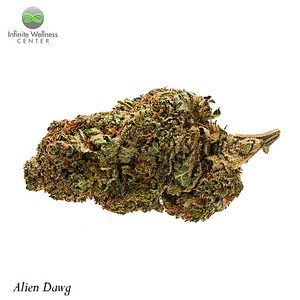 RDP_8929-Alien-Dawg