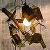 """Broken Bottle Chandelier""<br /> prototype<br /> wine bottle shards, steel wire, electric light<br /> 20"" x 20"" x 20"""