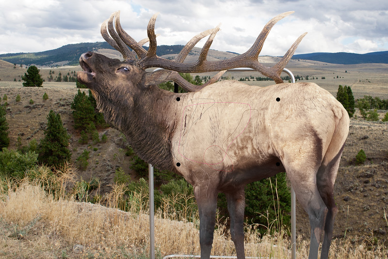 Rocky Mountain Elk Trophy Hunter Package