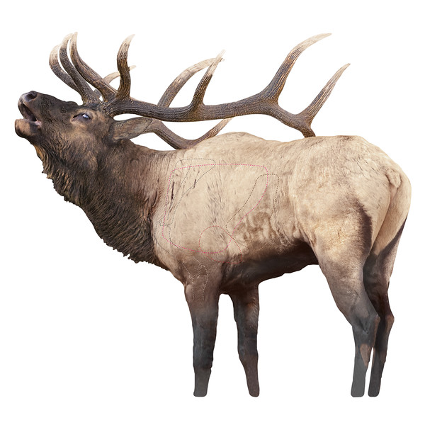 Rocky Mountain Elk Target Image Only