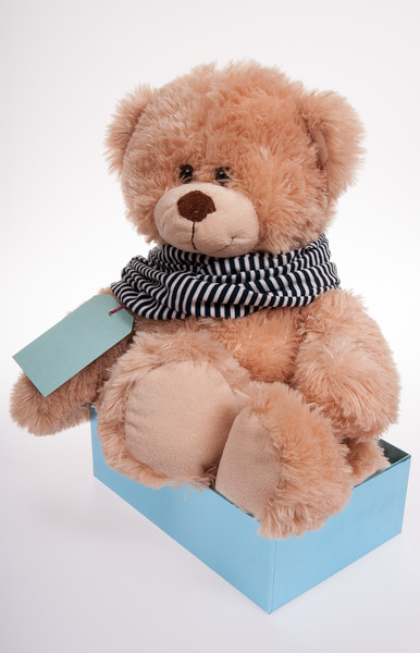teddy bear in a blue box, with a stripey scarf isolated on white background