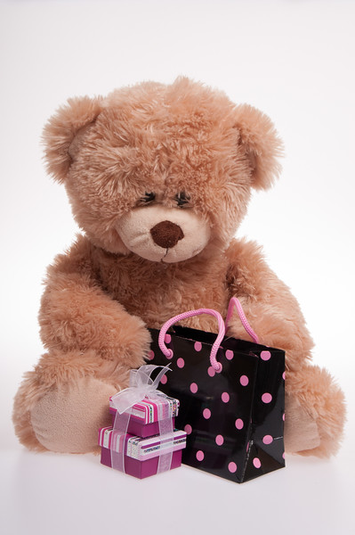 teddy bear with a spotty bag and a present, isolated on white background