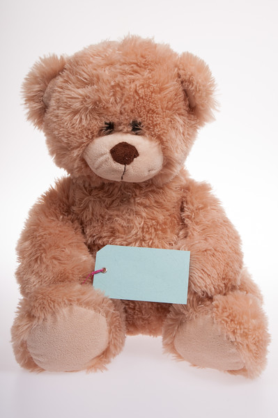 teddy bear holding a blue label isolated on white background
