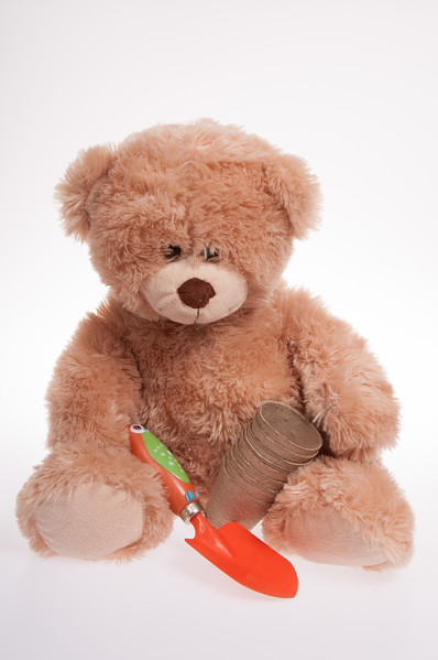 teddy bear with gardening tools isoloated on white background
