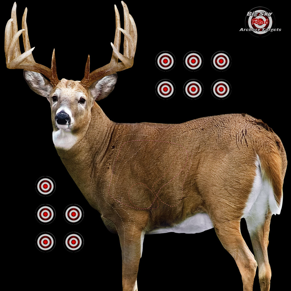 WHITETAIL, BLACKOUT BACKGROUND