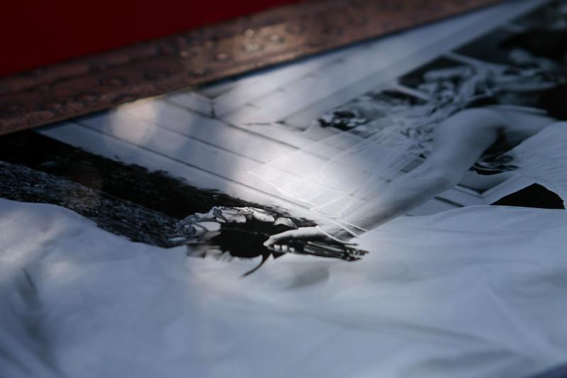 ice-print