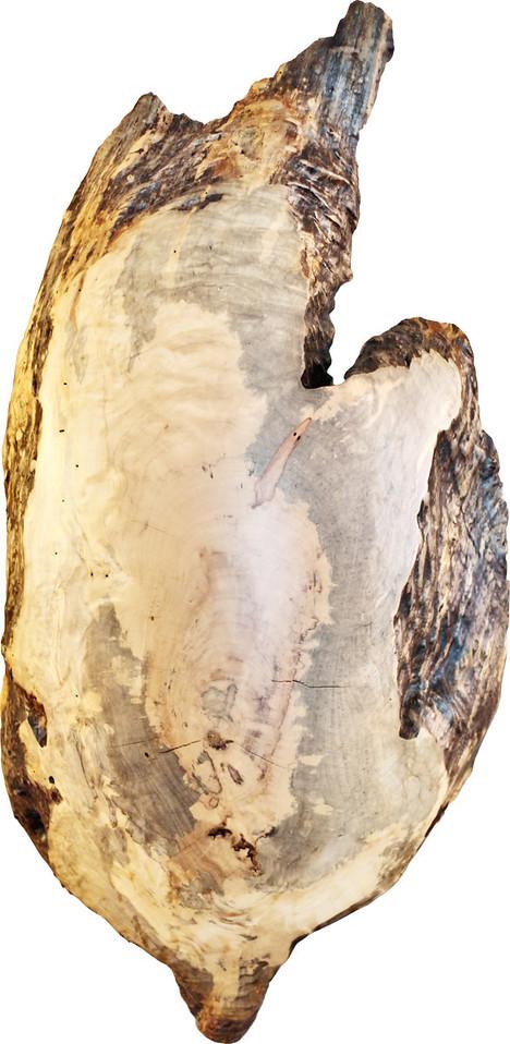 Wood Voyage Product Shoot 2