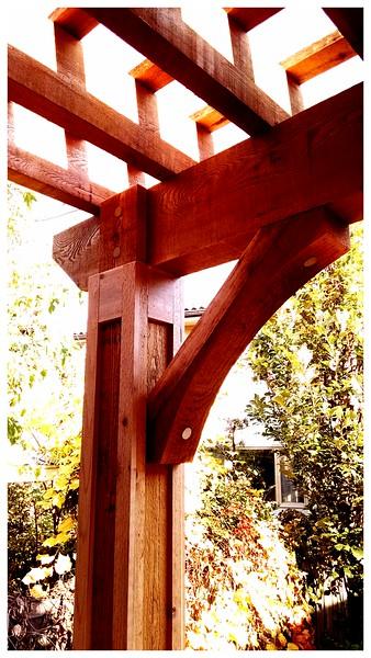 Cedar Pergola with Wood Brace 62T3