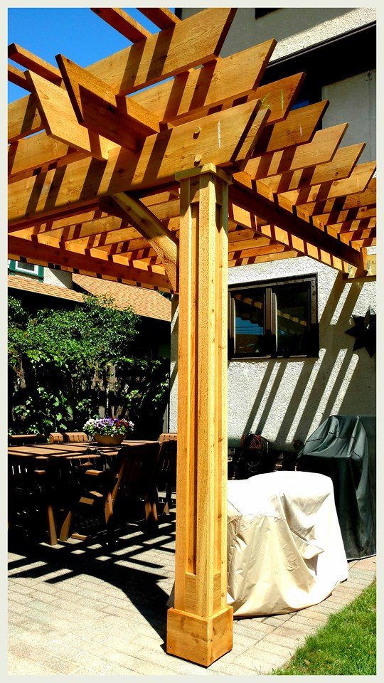 Pergola with Rough Wood Brace 62T3