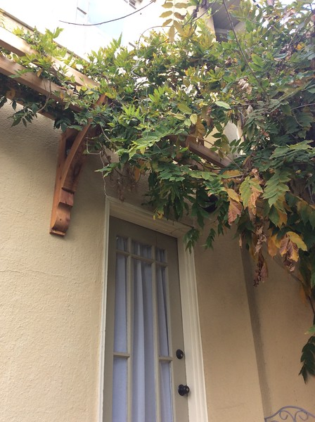 Pergola - Flowers with Wood Bracket 10T13