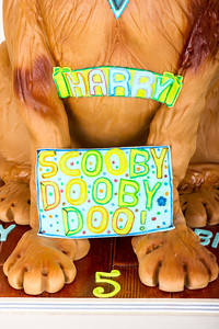130604_Harry's-5th-Birthday_04