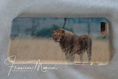 iphone case from Tanzania photo