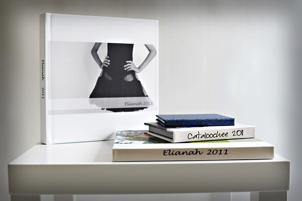 Albums<br /> Beautiful 20 page albums with flush mount thick lay-flat pages printed on linen press paper adhered to heavy cardstock