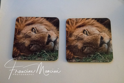 coasters from Tanzania photo