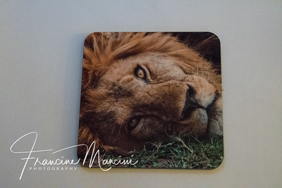 coaster from Tanzania photo