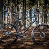 Trek 3-Series mountain bike