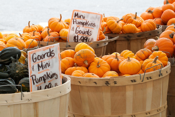 Produce, Herridge's Country Market