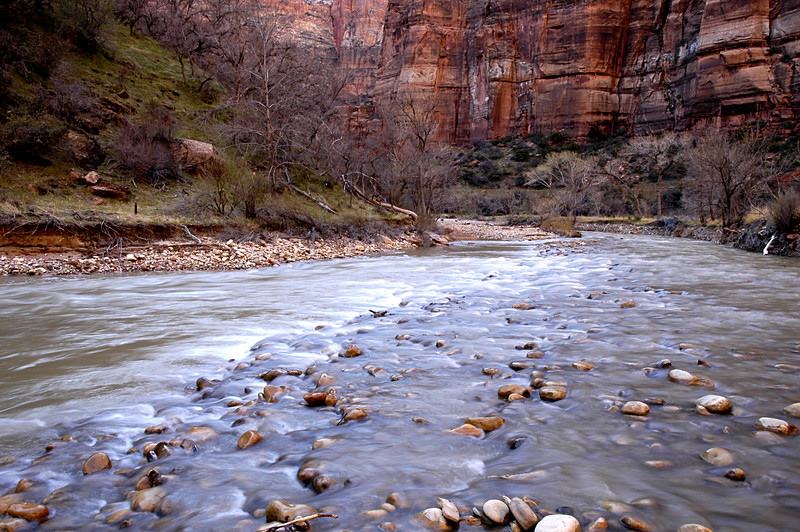 virgin river meanders through zion