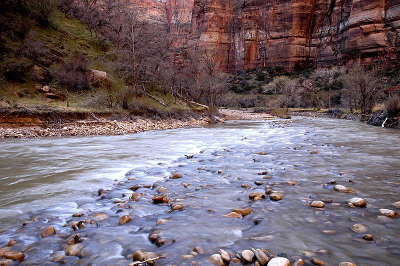 virgin river meanders through zion