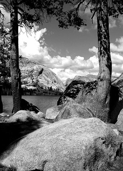 Tenaya Lake Black & White, Yosemite National Park, CA