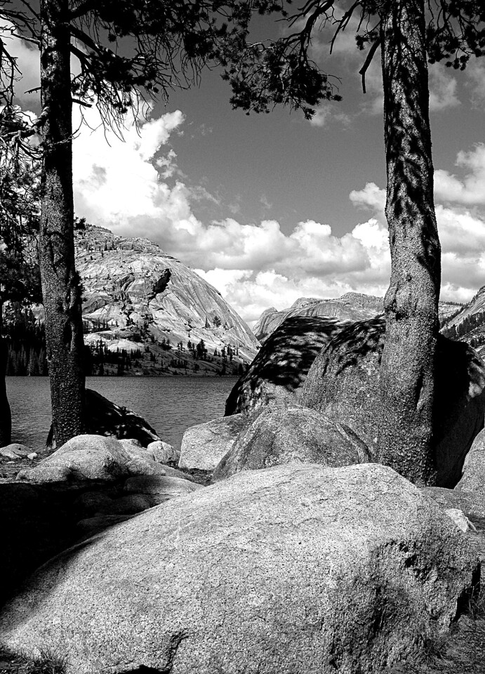 Tenaya Lake Black & White, Yosemite National Park, CA