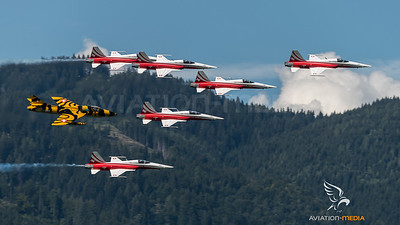 Swiss Air Force & Private / Northrop F-5E Tiger II & Hawker Hunter T.68 / Several & HB-RVV J-4206 / Patrouille Swiss Livery & Tiger Livery