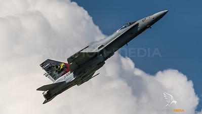 Swiss Air Force 11th Squadron / McDonnell Douglas F/A-18C Hornet / J-5017 / Falcon Livery