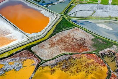 Salt Pond View