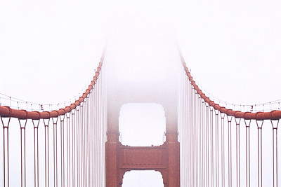 Cables in Fog