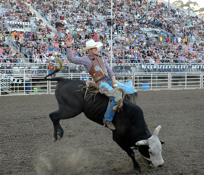 Professional Bull Riding