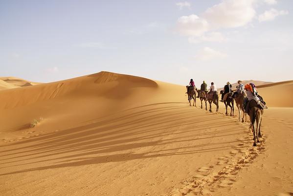 TGL Camel Caravan