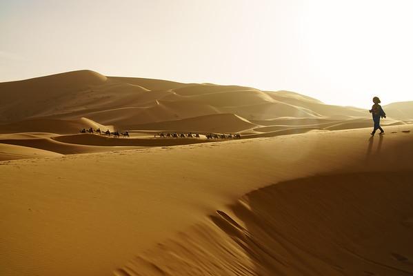 Ali and Camel Caravan