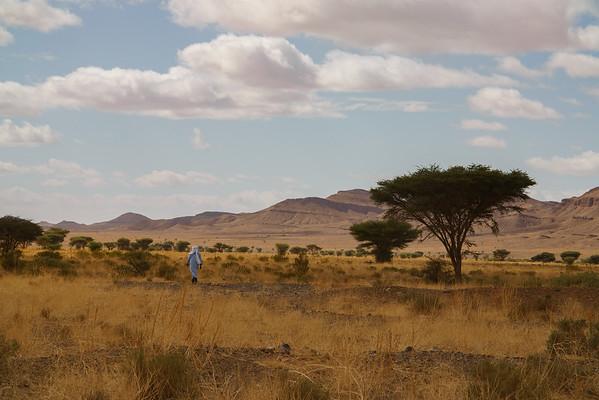 Near the Sahara