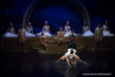Ballet Theatre UK-5500