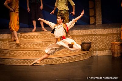 Ballet Theatre UK-5245
