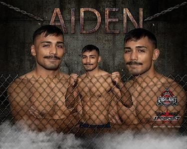 AIDEN 3