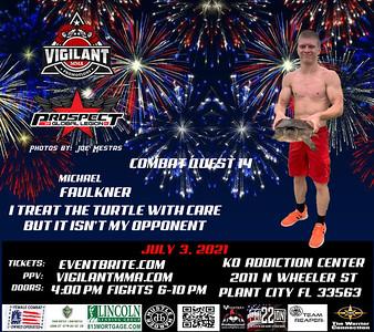 fireworks Jul 3 Faulkner turtle