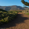 Marin Headlands trail