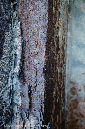Fort Point rust